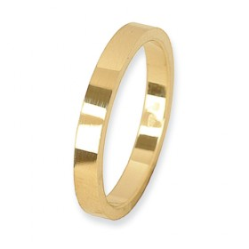 Eternity Velovingsring 14 krt Geelgoud 2,5 mm
