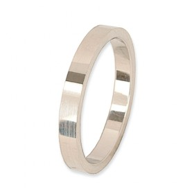 Eternity Verlovingsring 14 krt Witgoud 2,5 mm